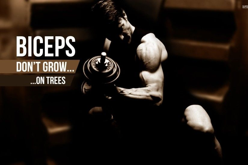 Body-building fitness muscle muscles weight lifting Bodybuilding (60)  wallpaper | 1920x1200 | 415606 | WallpaperUP