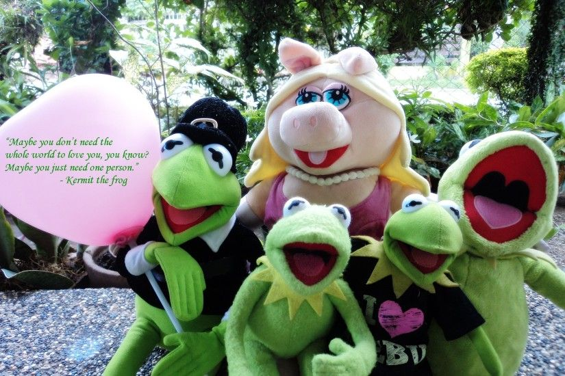 Kermit the Frog images Kermit the Frog and Miss Piggy HD wallpaper and  background photos