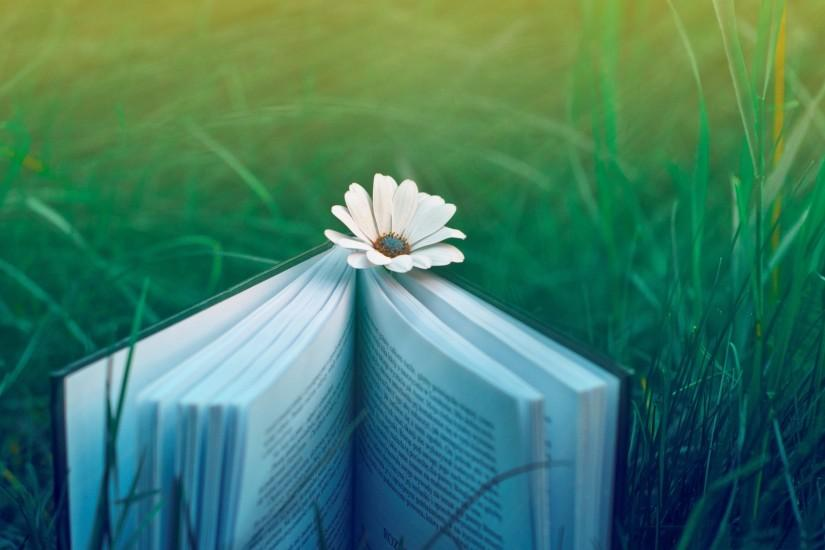 download free books wallpaper 2560x1600 for samsung