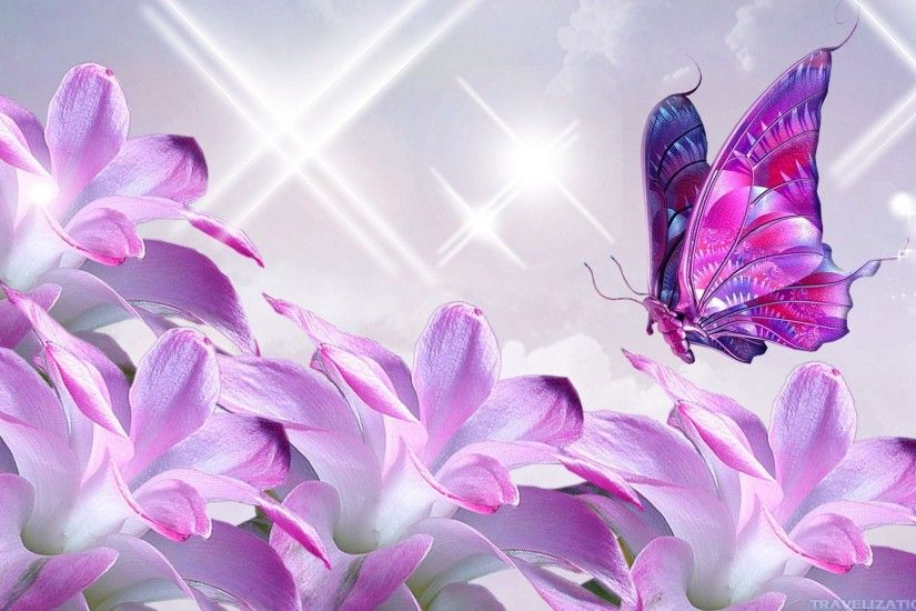 ... Pink Butterfly Wallpapers Group (5)