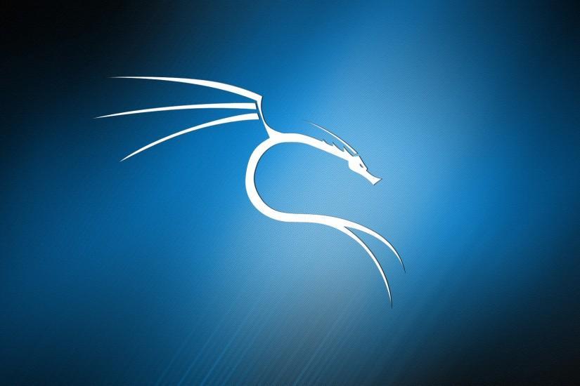 Kali Linux wallpaper ·① Download free beautiful ...