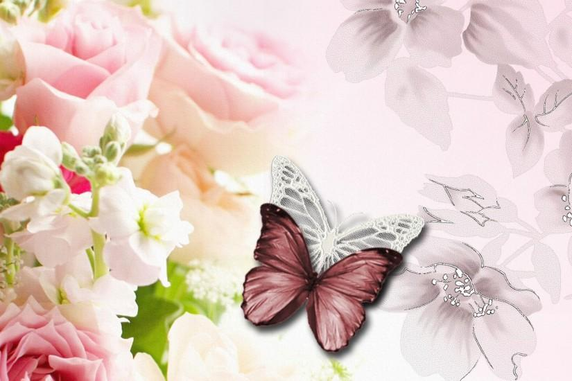 66 Butterfly Backgrounds ① Download Free Stunning High Resolution