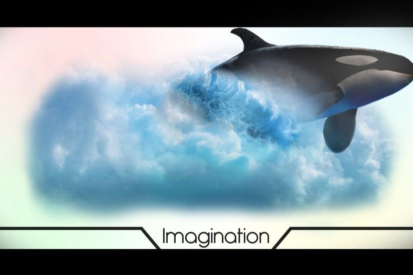 Animal - Whale Killer Whale Orca Cloud Basset Speed Art Photoshop Wallpaper