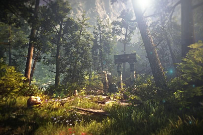 The Witcher Ruins Landscape Trees Forest Sunlight wallpaper background
