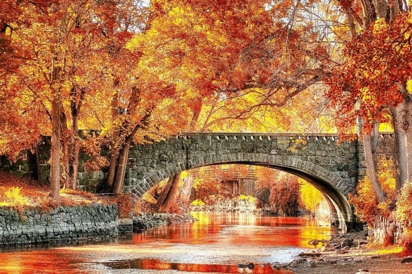 Autumn Bridge Beautiful Grass Sweden River Fall Trees Photo - 1920x1279