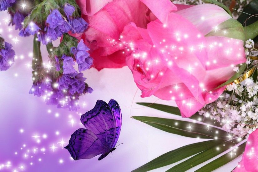 purple rose flower Widescreen Wallpaper