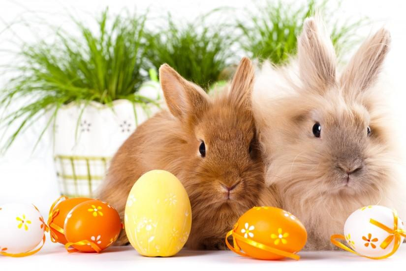 most popular easter wallpaper 2880x1800 lockscreen
