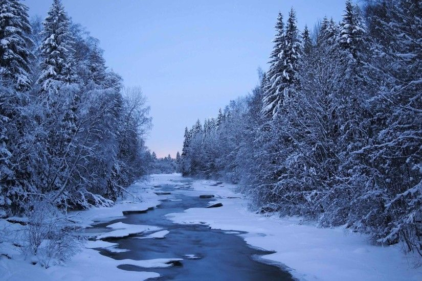 Rivers Winter Forests Trees Finland Snow Nature Green Wallpaper Free  Download