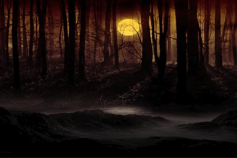 dark forest wallpaper 1920x1080 for hd 1080p
