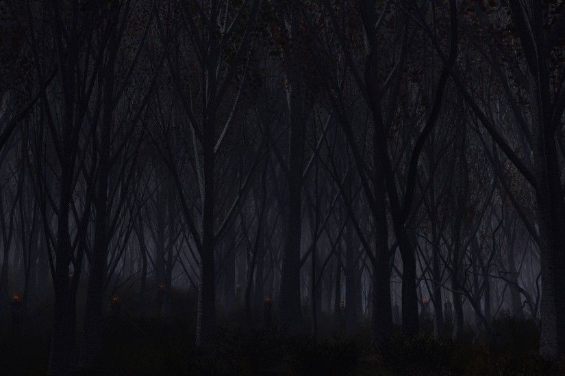 Preview wallpaper forest, trees, background, dark 3840x2160