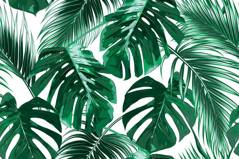 "Bay Isle Home Aerial Removable Tropical Palm Leaves 9.17' L x 175"" W Peel  and Stick Wallpaper Roll 