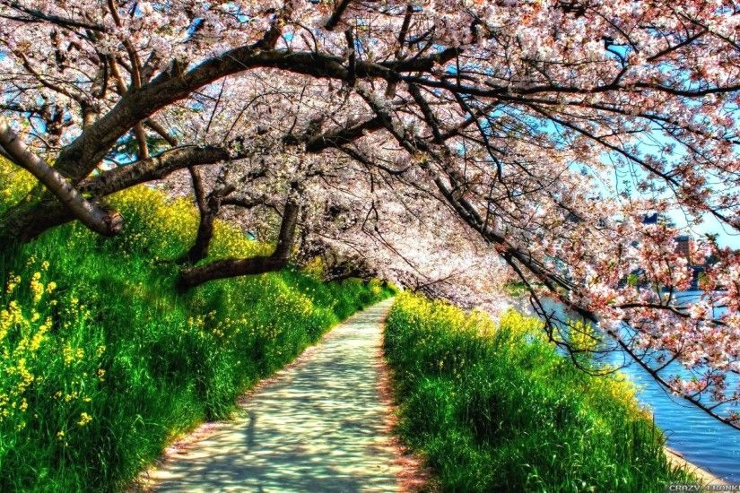 Beautiful Springtime | Spring | Nature HD wallpapers of Spring .