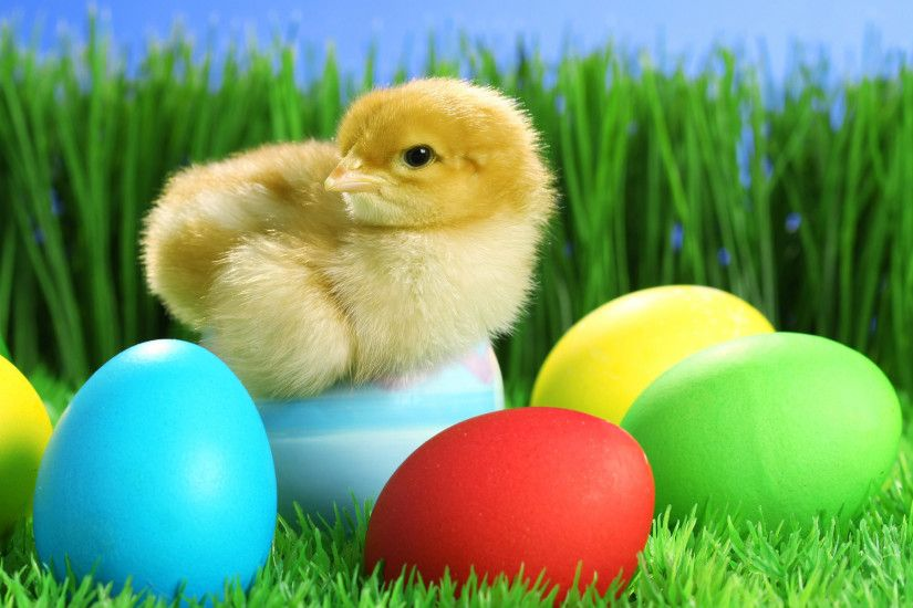 Cute And Colorful Easter Wallpapers -