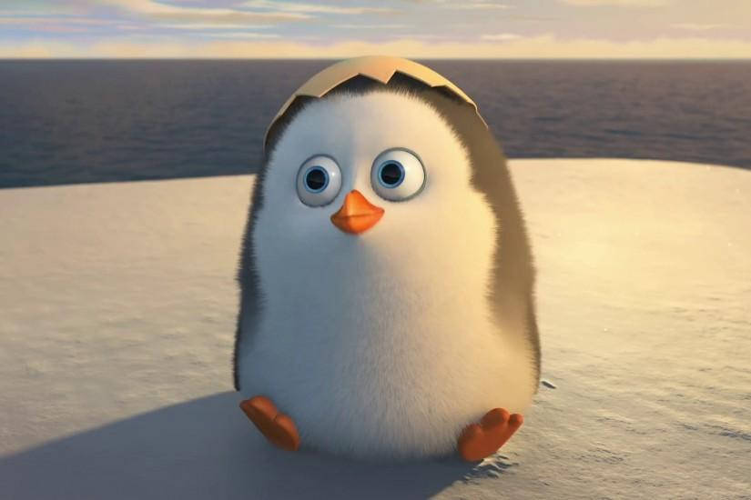 The-Penguins-of-Madagascar-Movie-2014-Cute-Baby-
