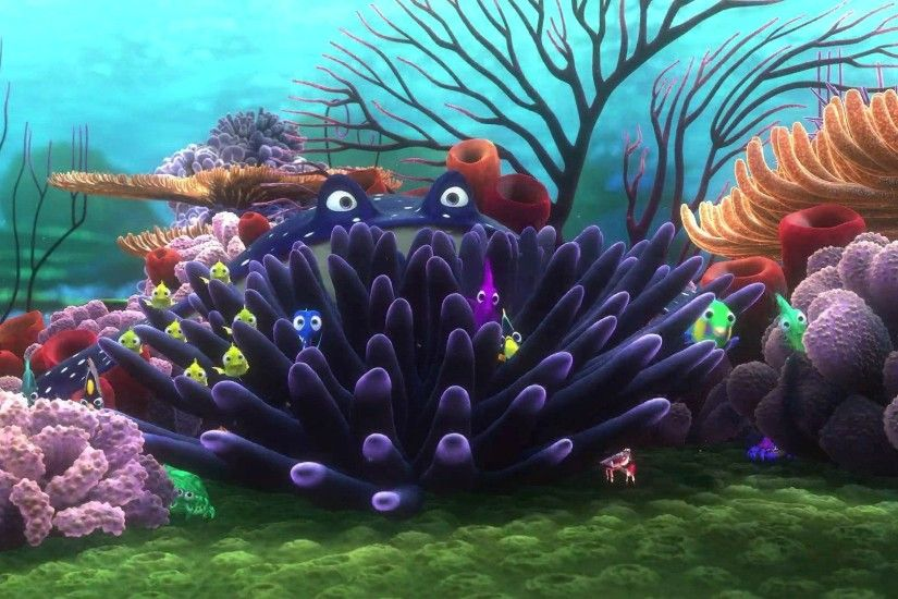 FINDING NEMO animation underwater sea ocean tropical fish adventure family  comedy drama disney 1finding-nemo wallpaper | 1920x1080 | 567526 |  WallpaperUP