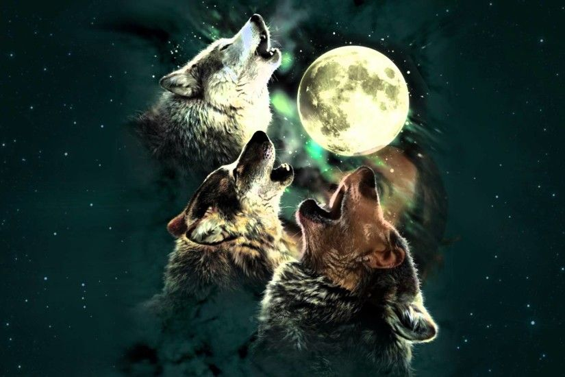 Howl at the Moon Night