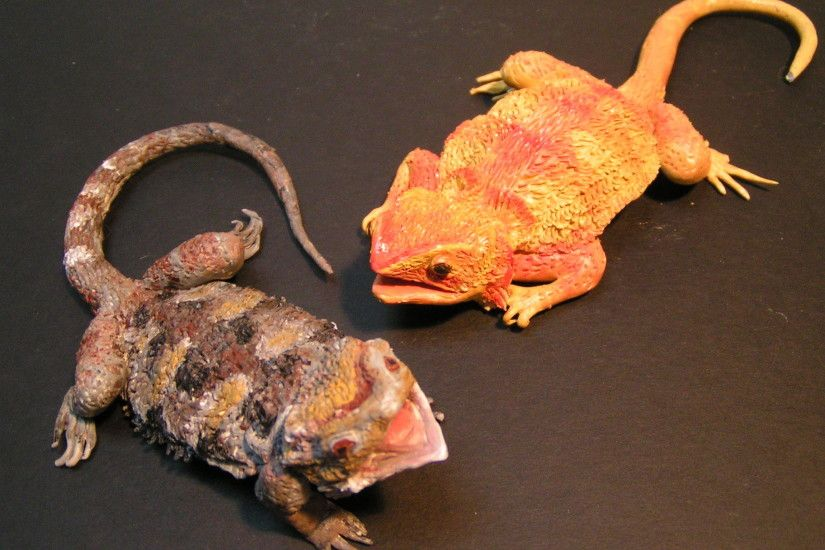 Bearded dragons 3 by Malicious-Monkey ...