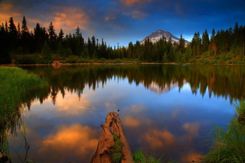 Photos USA Mt Hood National Oregon Nature Lake Forests Landscape  photography Water 2100x1400 Scenery