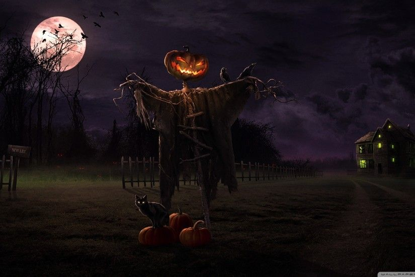 Spooky Path HD Wide Wallpaper for Widescreen