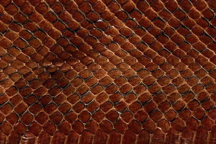 Preview wallpaper texture, leather, snake, scales, background 3840x2160