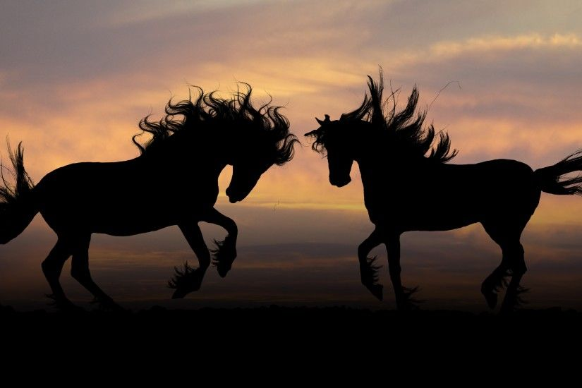 Wallpaper: Horse Silhouettes. Ultra HD 4K 3840x2160