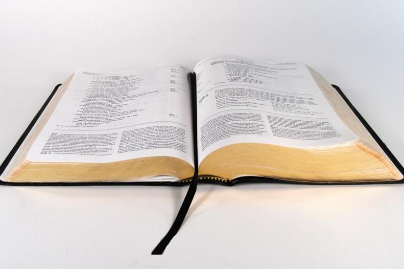 Typology allows Scripture to interpret Scripture