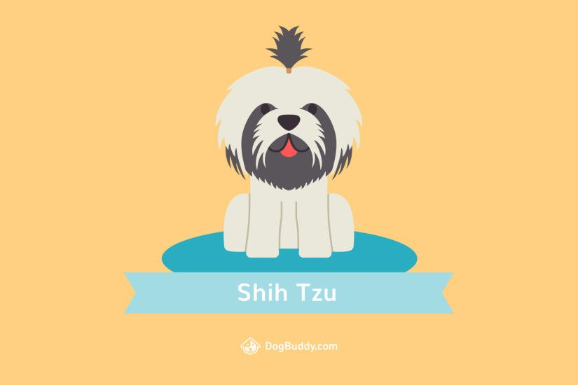 Desktop wallpaper. Download: Shih Tzu Desktop Woofpaper