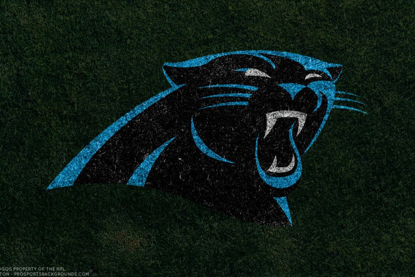 carolina panthers wallpaper 1/4 | nfl teams hd backgrounds