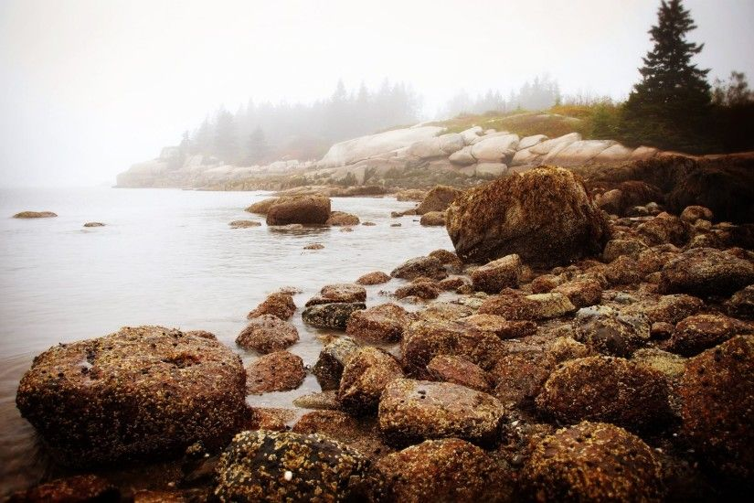 nature new england morning sea water stones forest fog