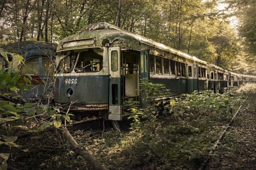 nature, Trees, Leaves, Vehicle, Tram, Railway, Rail Yard, Forest, Branch,  Wreck, Old, Abandoned, Broken, Rust, Scrap Wallpapers HD / Desktop and  Mobile ...