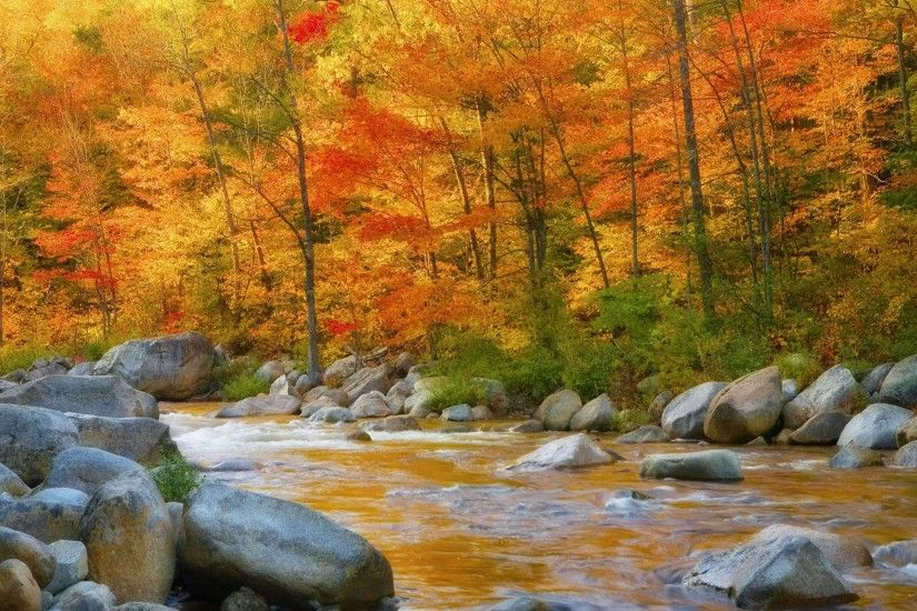 Free Autumn River Photo.