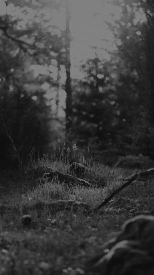 Black And White Forest Nature Eerie Android Wallpaper ...