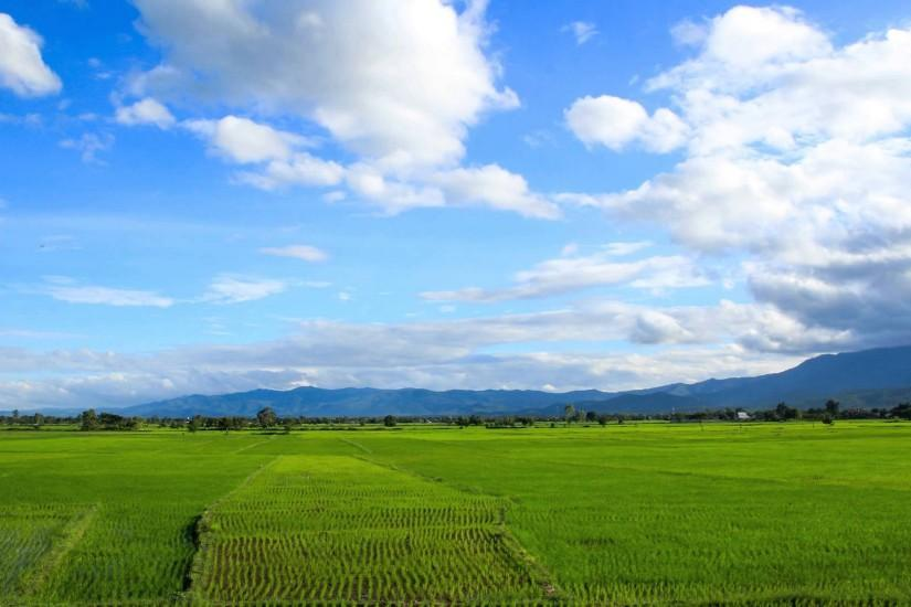 Time lapse, Rice field with mountains and moving clouds in the background.