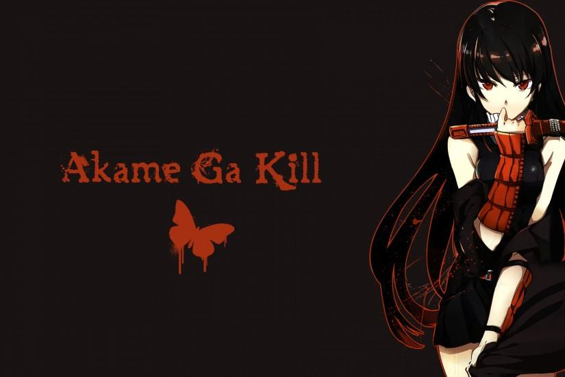 best akame ga kill wallpaper 1920x1200 for meizu