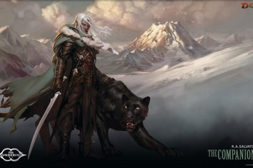 Gallery for > drizzt wallpapers