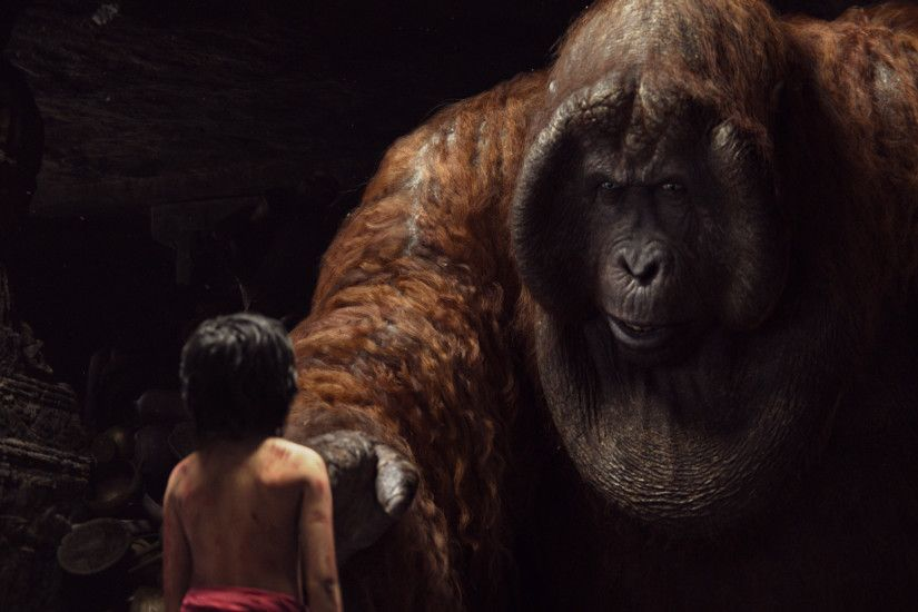 Movie - The Jungle Book (2016) Orangutan Wallpaper