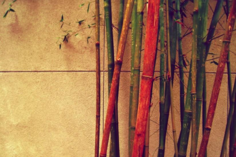bamboo background 1920x1200 for android 50
