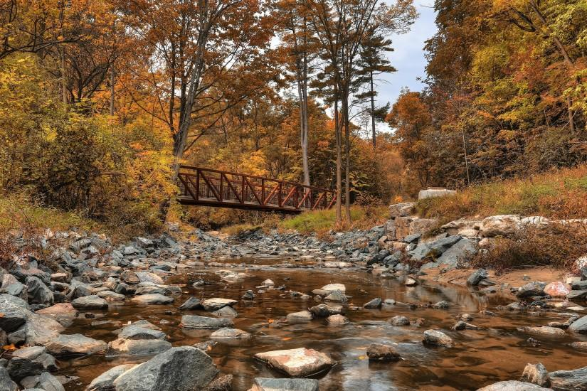 Forest River Bridge Autumn Landscape 4K Ultra HD