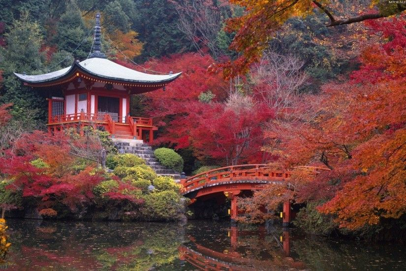 Explore Japanese Tea House, Japanese Gardens, and more!