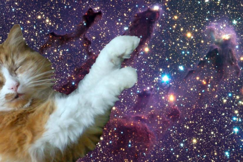 Galleries Related: Tumblr Cat Trippy , Tumblr Cat Background ,