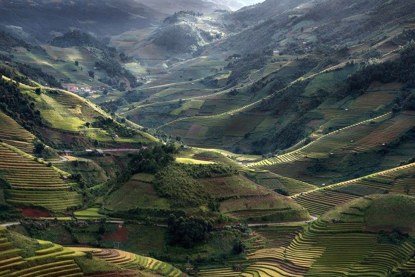 nature, Landscape, Mountain, Field, Terraces, Sunlight, Road, Trees,  Village, Green, Vietnam, Rice Paddy Wallpapers HD / Desktop and Mobile  Backgrounds