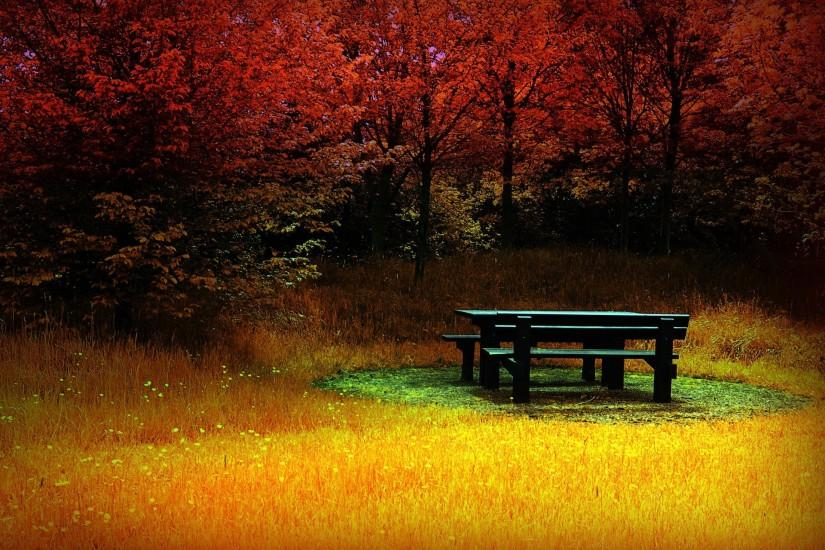Autumn-HD-desktop-wallpaper2013