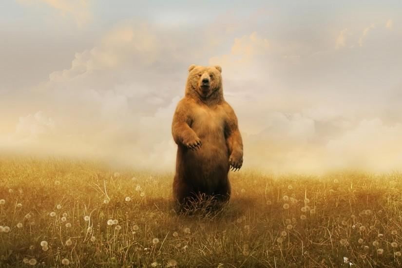 Desktop Wallpaper · Gallery · Windows 7 · Spring bear pc .