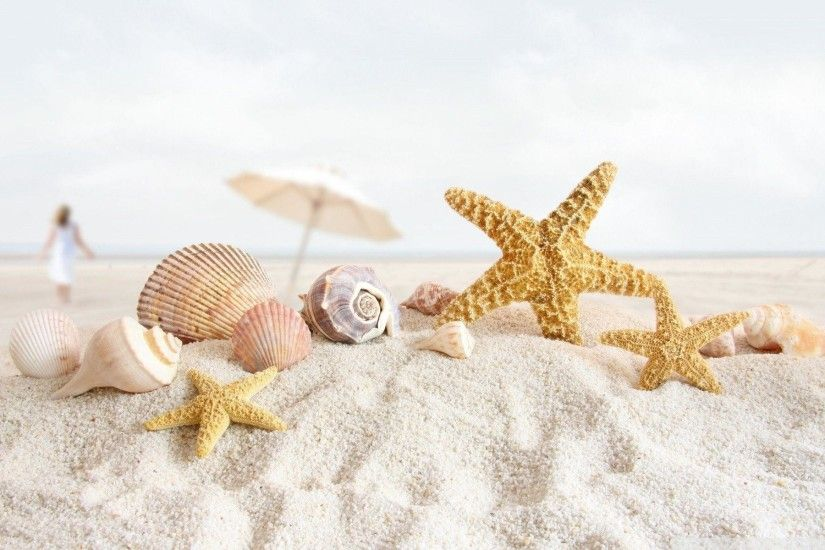 Glitter tumblr - Seashell wallpaper - Seashell - Sea shell .