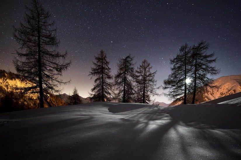 Preview wallpaper winter, trees, snow, night, landscape 1920x1200