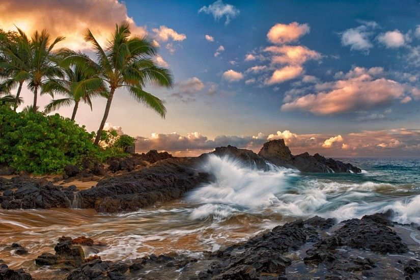 Preview wallpaper maui, hawaii, pacific ocean, rock, surf, rocks, palm
