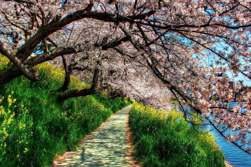 Beautiful Spring images download PixelsTalk. HD Spring Wallpaper for  Desktop 1920×1080