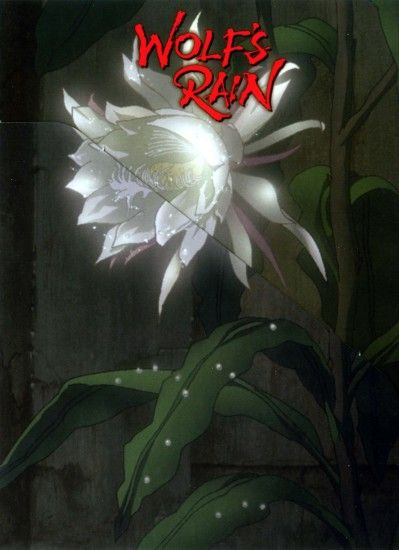 Tags: Anime, Wolf's Rain, Cheza, Mobile Wallpaper
