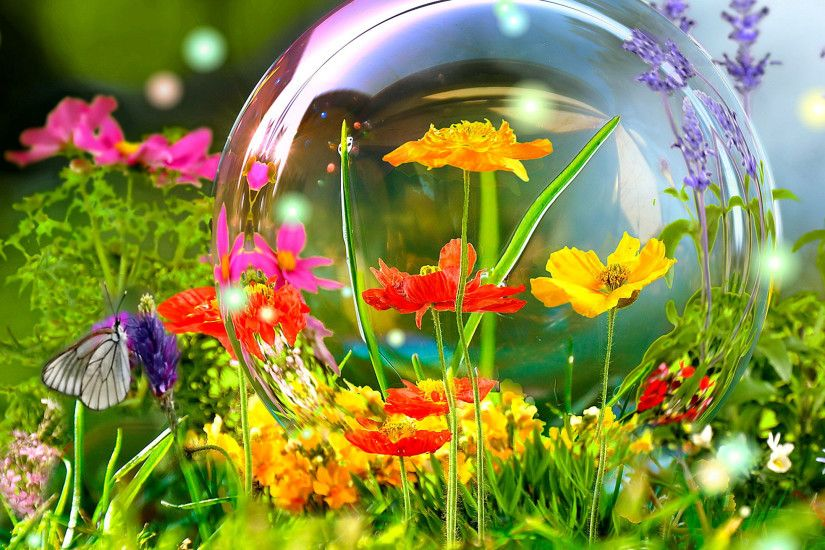 Spring flowers nature scene hd wallpapers free download