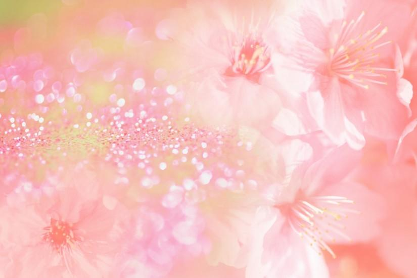 flowers background 1920x1200 cell phone